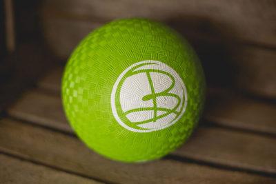 B Present Exercise Ball